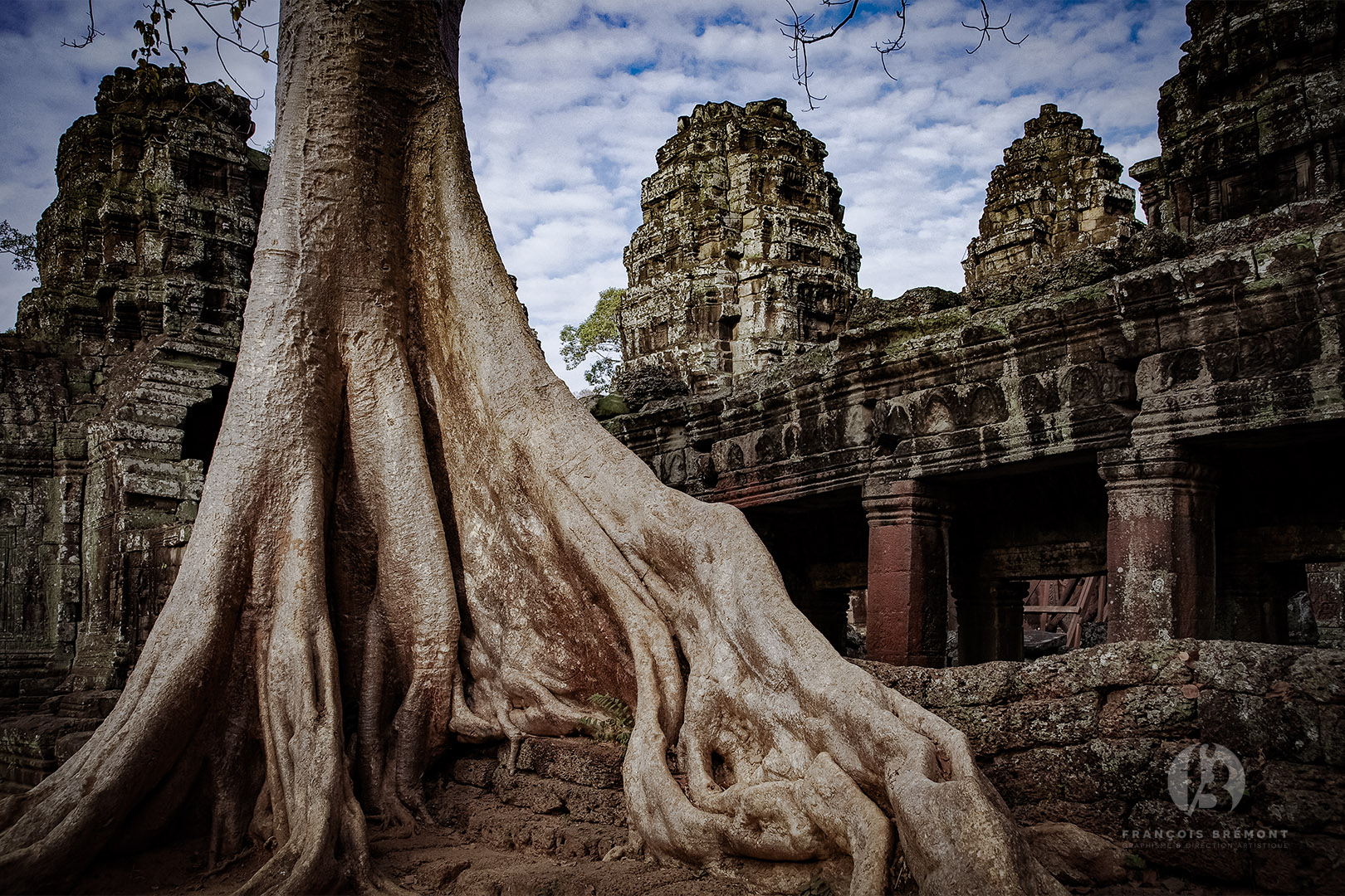 Angkor & Siem Reap